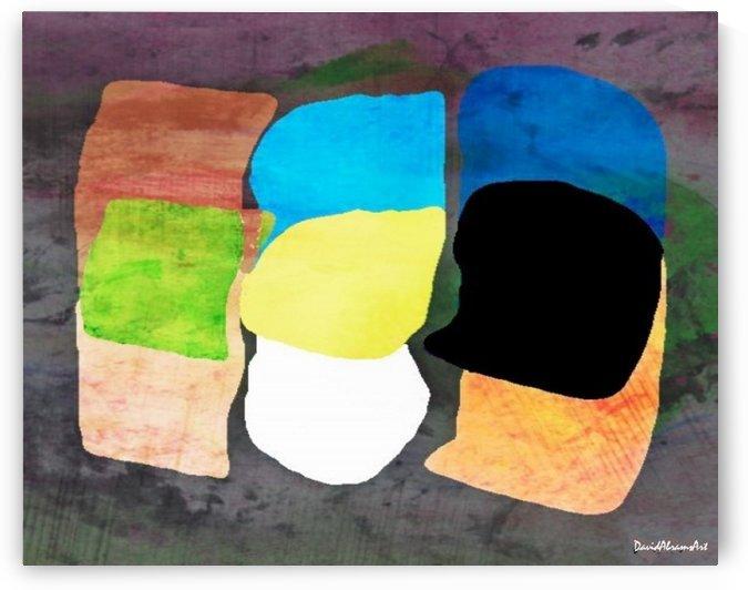 Pillows by David Abrams Art
