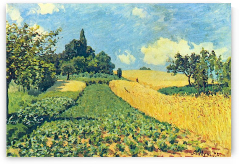Grain fields on the hills of Argenteuil by Sisley by Sisley