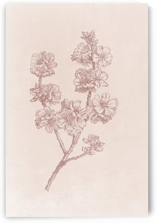 Flower Branch 03 by Apolo Prints