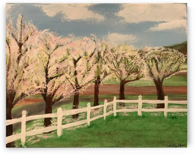 Trees In Bloom by Jacqueline Sleter