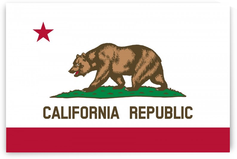 California State Flag by Fun With Flags