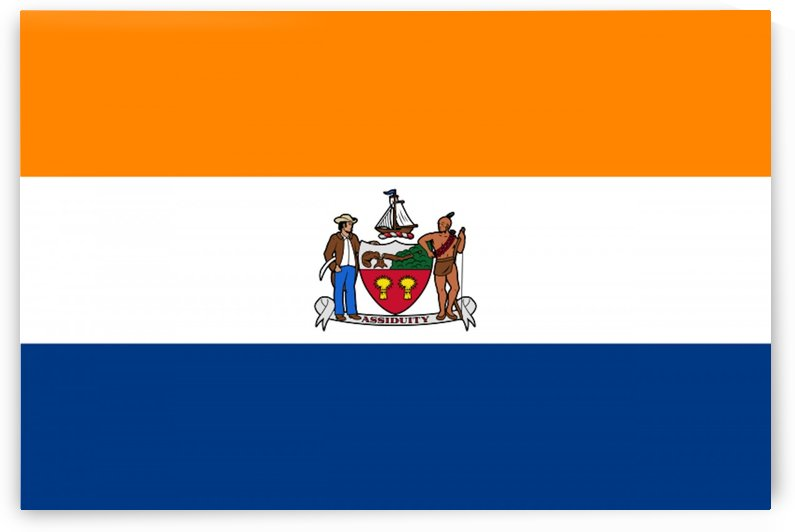 Albany New York Flag by Fun With Flags