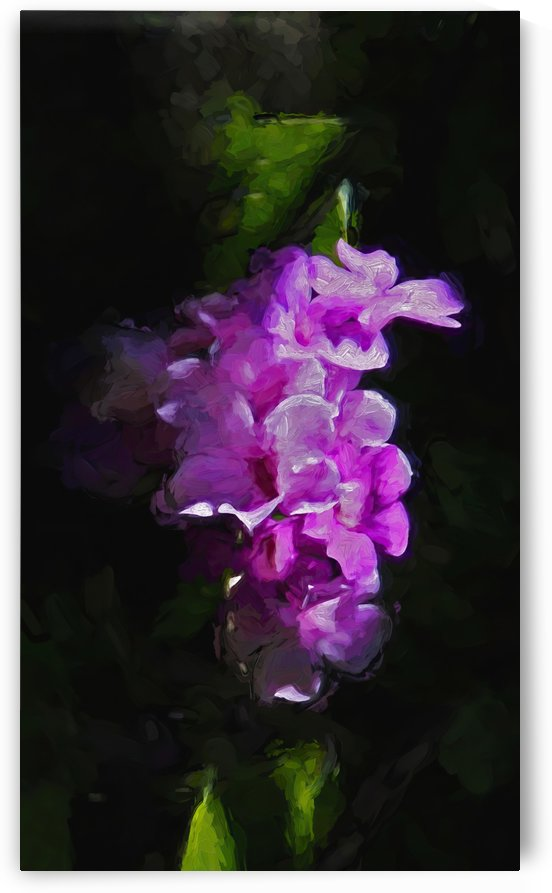 Purple Passion Vertical by HH Photography of Florida