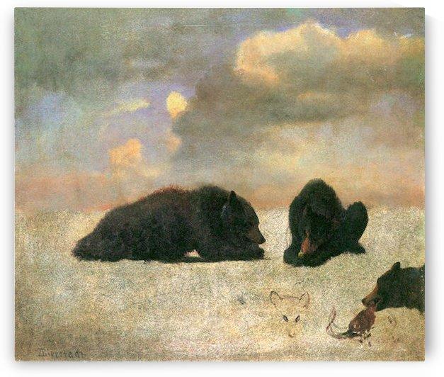 Grizzly Bears by Bierstadt by Bierstadt
