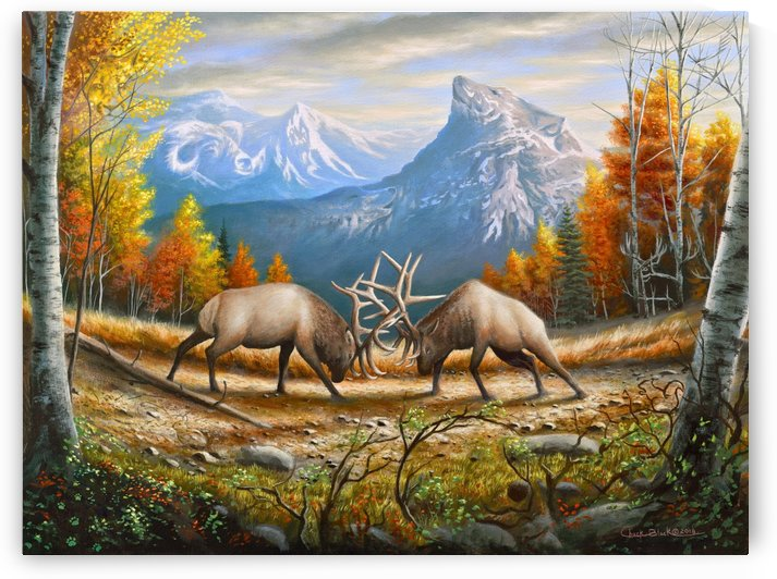 CANVAS_The Wild Frontier by CRB