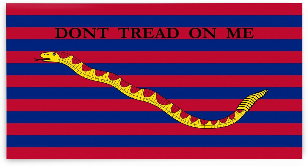 South Carolina Navy Ensign by Fun With Flags