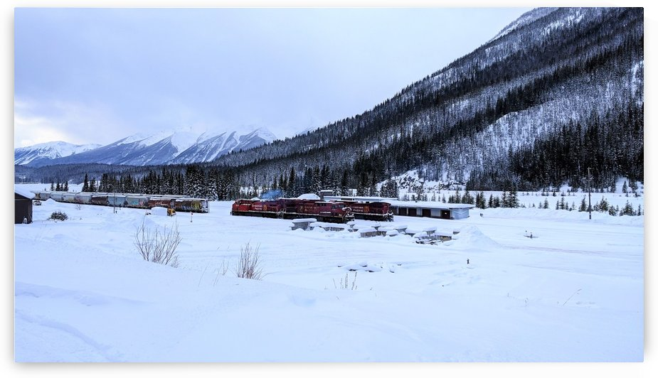 A Red Train in the White Valley by Gui Barret