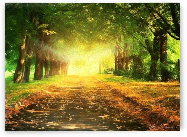 Autumn Path 1 by AMANDA WYN CHANCE