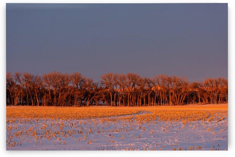 Color Shift Sunset by Garald Horst