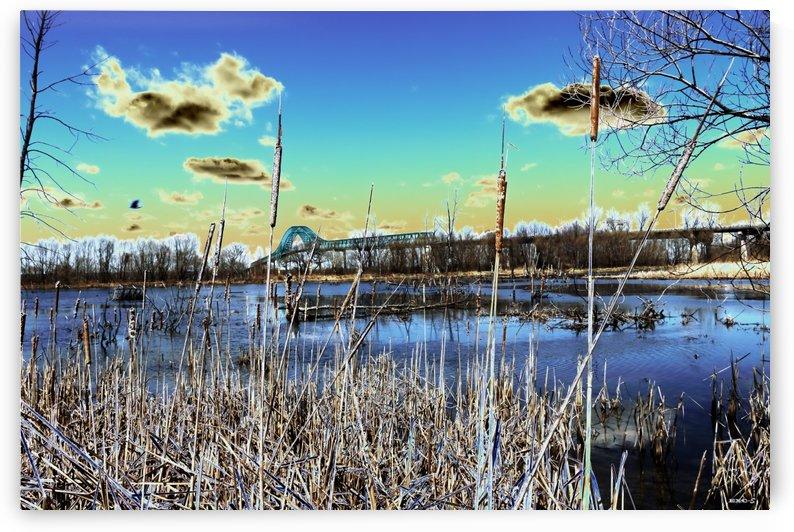 Pont des marais- Collection EXC-S by Sylvain Bergeron Photographies