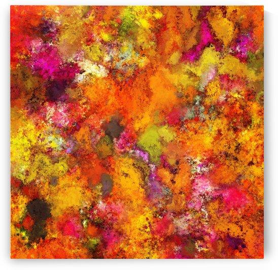 Orange pop by Keith Mills