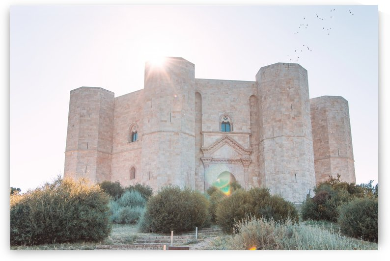 Castel del Monte castle I south Italy  by Sedgraphic