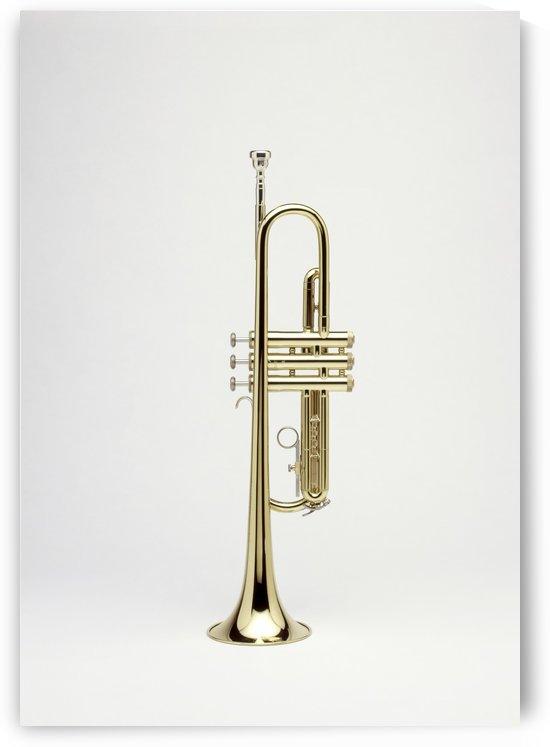 Trumpet  by Ian Barr