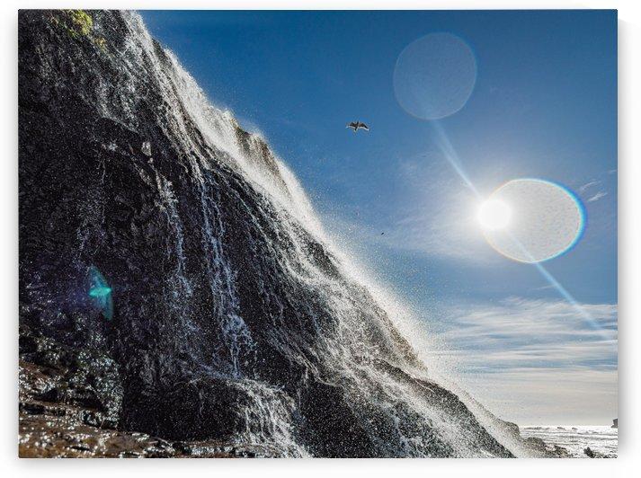 Alamere Falls by David Yoon