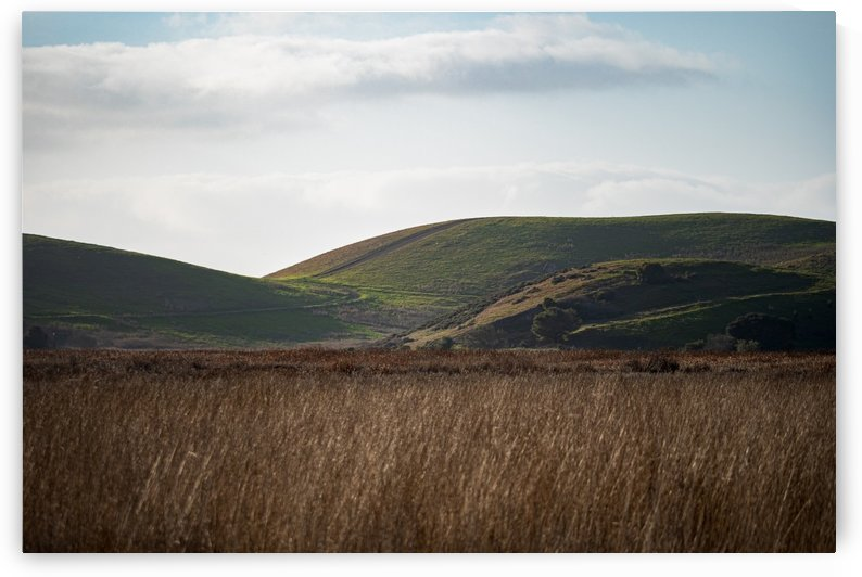 Coyote Hills During Sunset by David Yoon