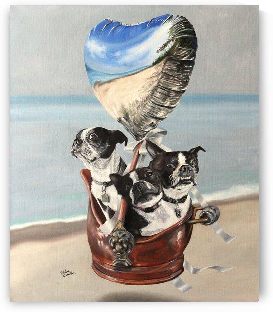 Three Bostons in a Bucket by Melanie Charlton