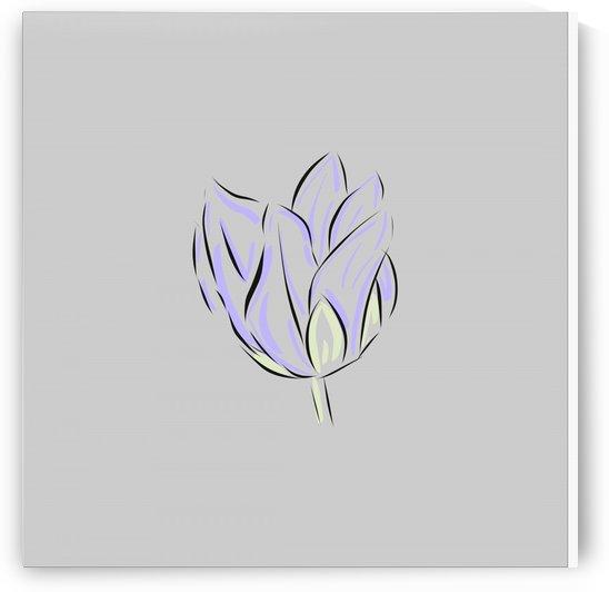 Tulipan Purpura by Fer Mavec