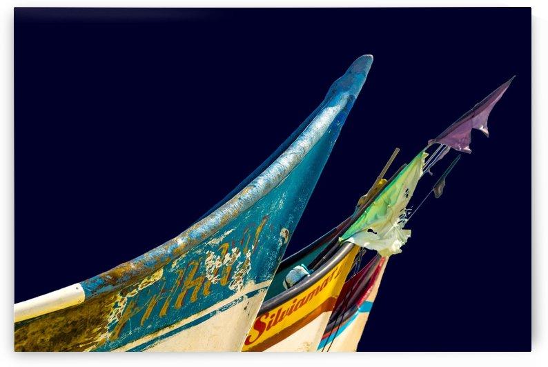 Boat XXXVII by Carlos Wood