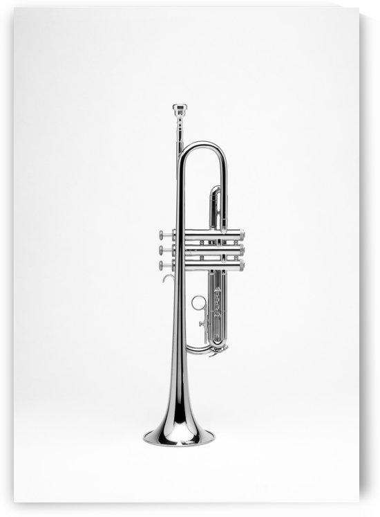 Trumpet BW by Ian Barr