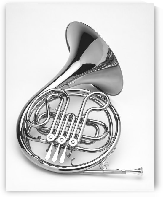 French Horn  BW by Ian Barr