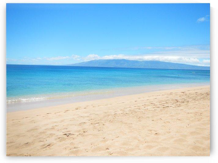 Heavenly Beach Shoreline by tiana anderson