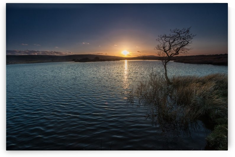 Broad Pool North Gower by Leighton Collins