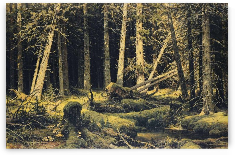 Wind Fallen Trees by Ivan Shishkin