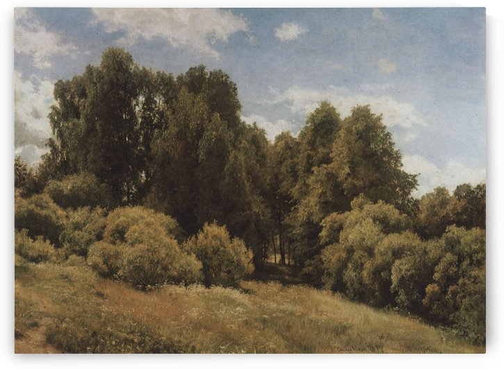 The glade by Ivan Shishkin