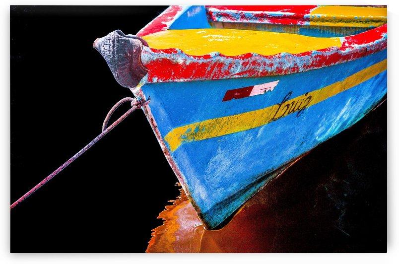 Boat LXII by Carlos Wood