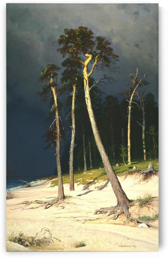 A Sandy Coastline by Ivan Shishkin