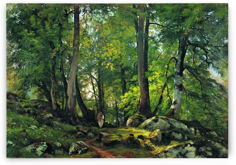 Beech Forest in Switzerland by Ivan Shishkin