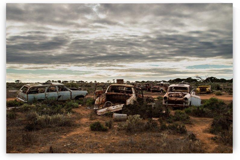 Vintage Car Graveyard by TJ Weisenberger II