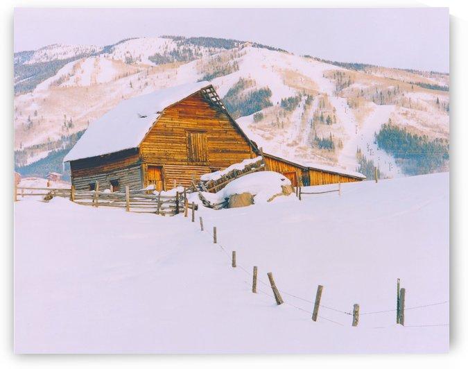 Steamboat Barn Colorado by Steve Tohari