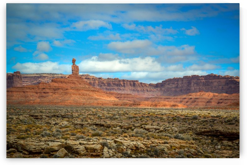 Landscape in Canyonlands Park Moab Utah USA by Francois Lariviere