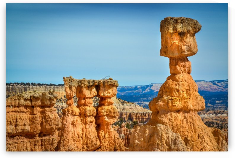 View of Bryce Canyon park at the top of the mountain Utah USA by Francois Lariviere