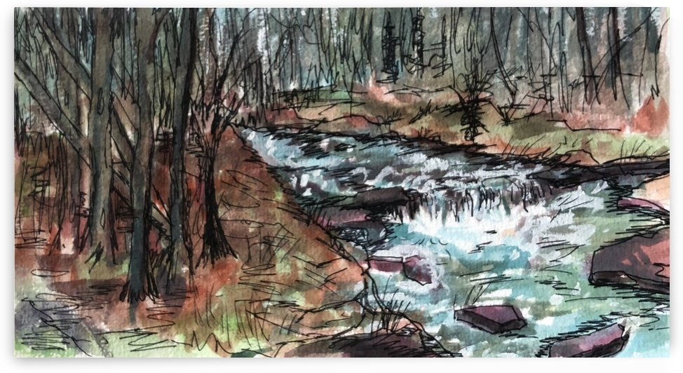 Buffalo River  by J HARRIS