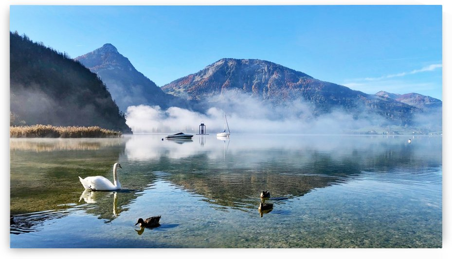 Fog Lifting at Wolfgangsee by Susan Fischer