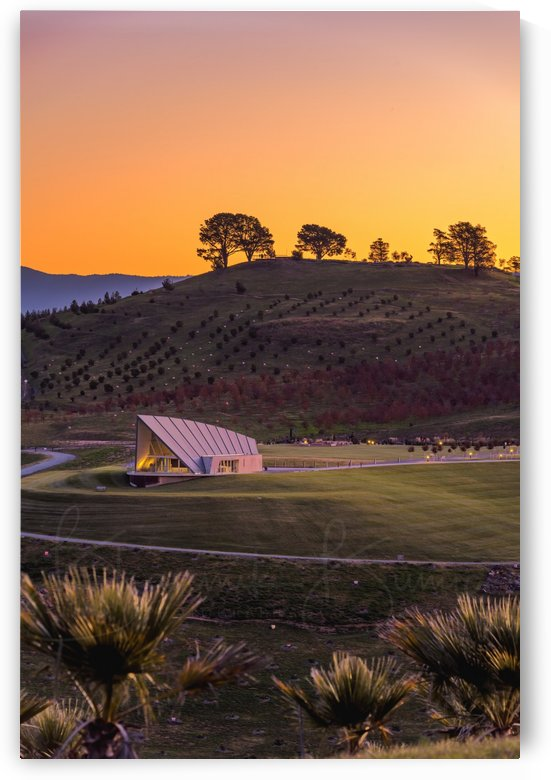 Arboretum sunset Portrait mode by BBCLICKZ - Bhaumik Bumia Photography