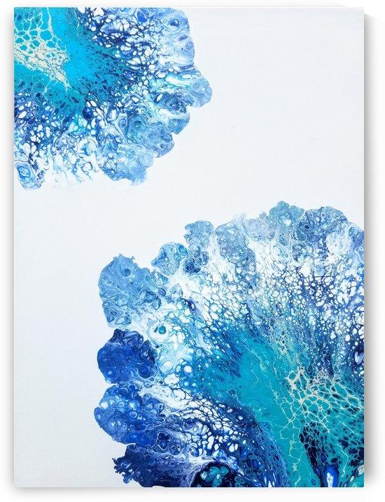 Coastal Coral by Coastal Colors Art Co