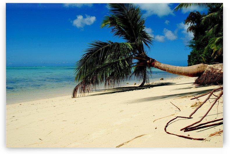 Micro Beach by On da Raks