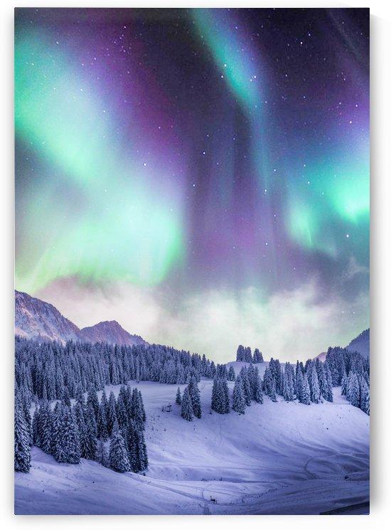 Aurora Borealis In The Winter by Okan28