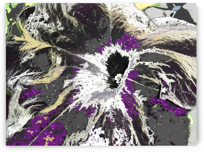Abstract Purple Petunia by BotanicalArt ca