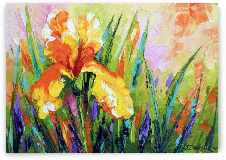 Iris  by Olha Darchuk