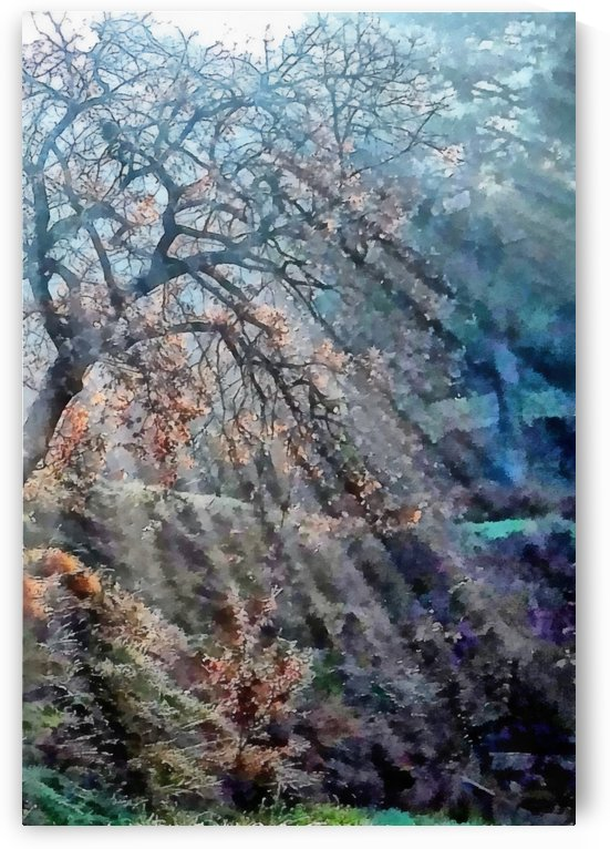 Hope Shines With The Sun by Dorothy Berry-Lound