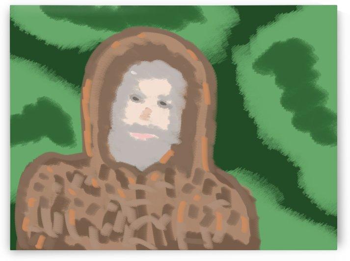 Beaver Pelts by W Scott