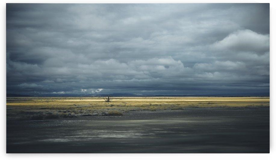 ... waiting rain  by Marko Radovanovic