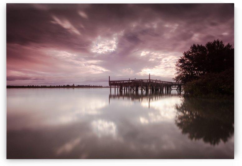 Fraser river boardwalk by Leighton Collins