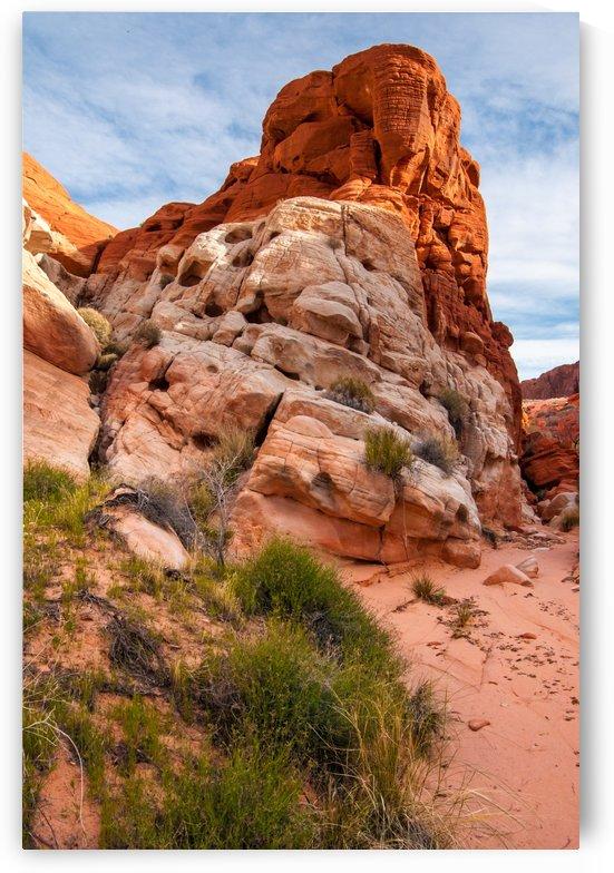 Mojave Desert Sandstone Wash - Valley of Fire - Nevada by Gary Whitton