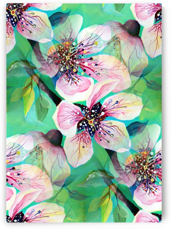 Japanese Sakura Cherry Blossom  by Nisuris Art