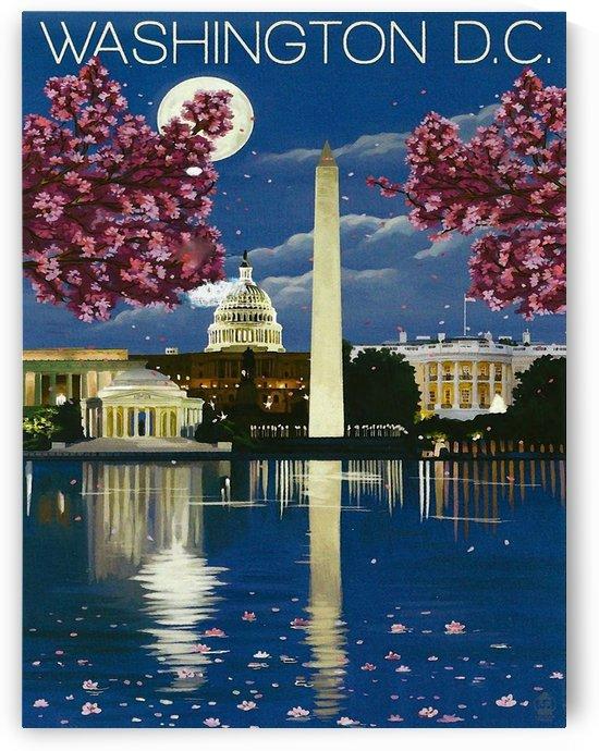 Washington DC by vintagesupreme